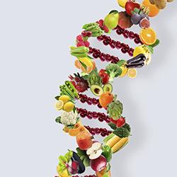 Diabet și Boli de Nutriție